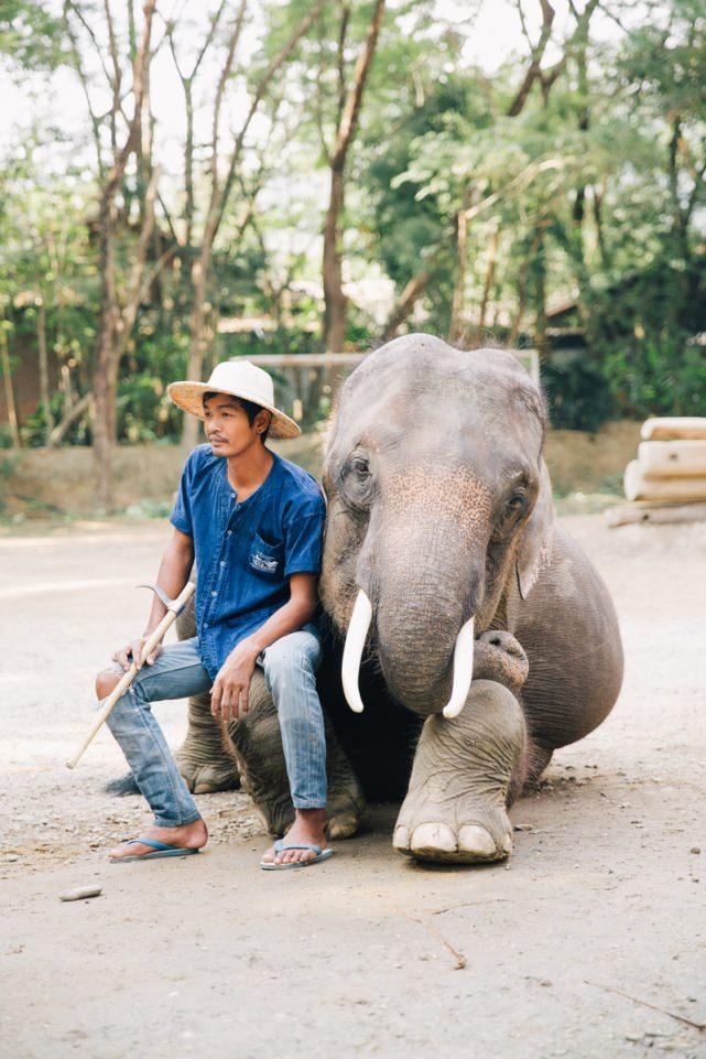 Chang Mai, Thailand Destination Wedding Photographer Florida, New York City