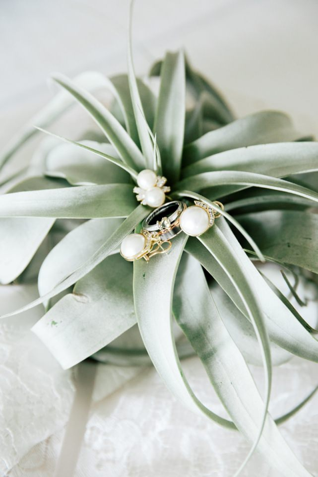 Airplant Boquet for bridesmaids